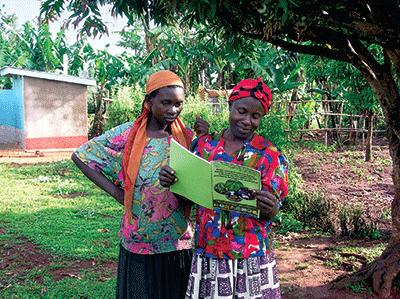 Farmers read a Striga management handbook